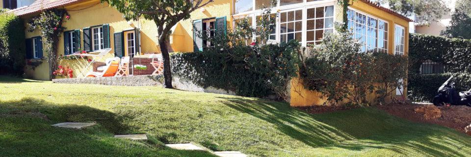 Dê cor ao Seu jardim